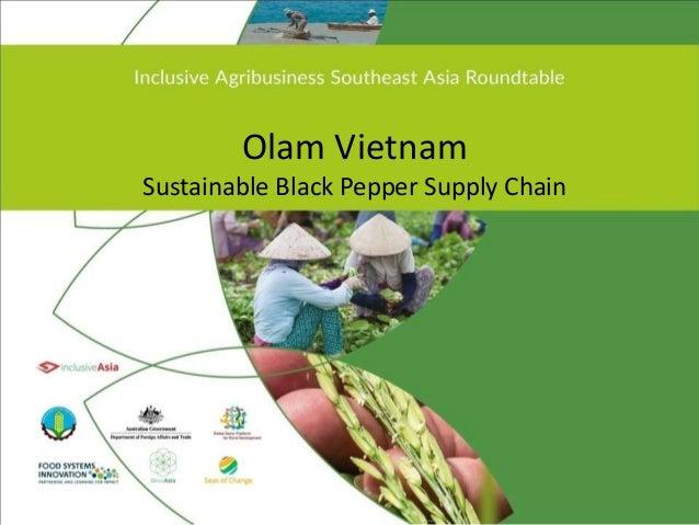 Olam Vietnam Sustainable Black Pepper Supply Chain