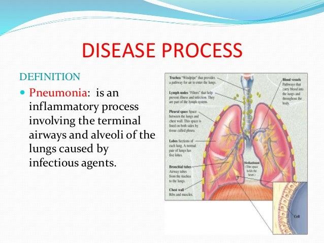 case study pn, Human Body