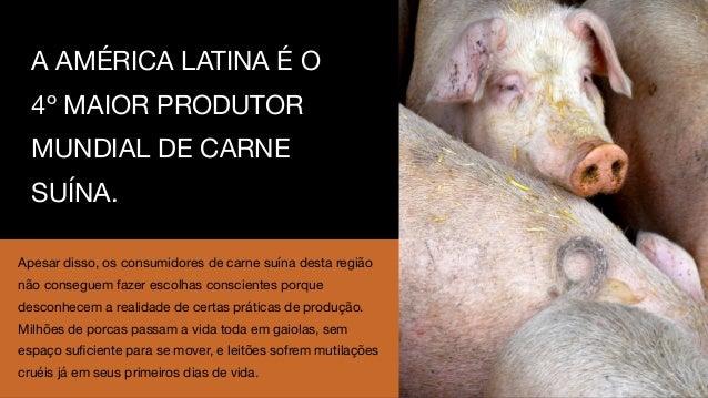 Case Soneto | Campanha #mudeavidadosporcos Slide 3