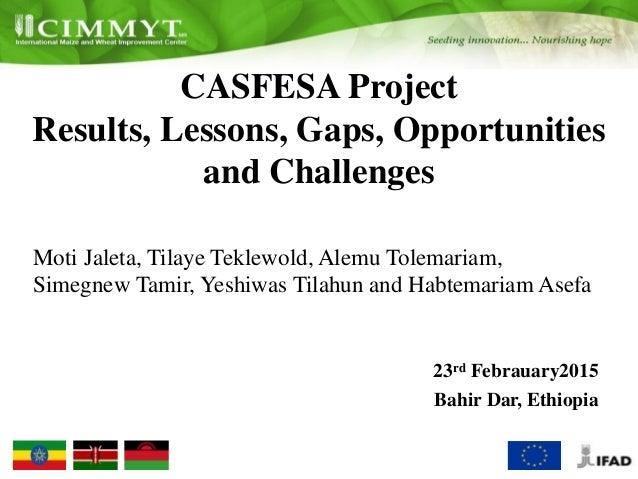 CASFESA Project Results, Lessons, Gaps, Opportunities and Challenges Moti Jaleta, Tilaye Teklewold, Alemu Tolemariam, Sime...