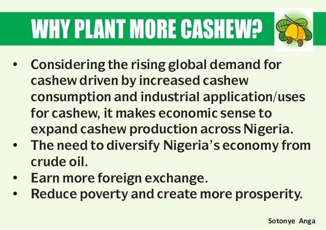 https://image.slidesharecdn.com/cashewpresentstion40-160601175858/95/cashew-plantation-business-plan-5-638.jpg?cb=1464804258