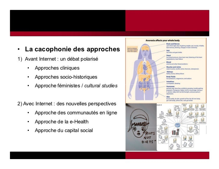 • La cacophonie des approches1) Avant Internet : un débat polarisé    •   Approches cliniques    •   Approches socio-histo...