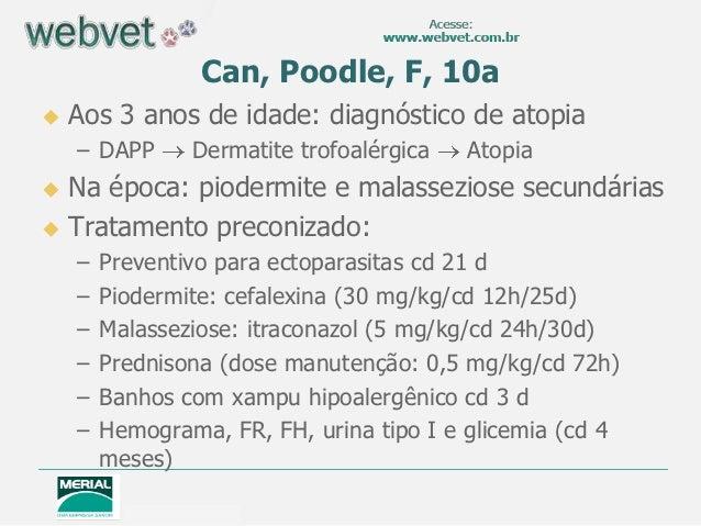 Can, Poodle, F, 10a   Aos 3 anos de idade: diagnóstico de atopia    – DAPP      Dermatite trofoalérgica   Atopia Na époc...