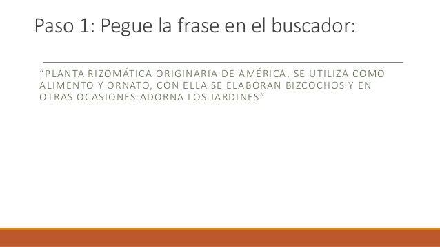 """Paso 1: Pegue la frase en el buscador: """"PLANTA RIZOMÁTICA ORIGINARIA DE AMÉRICA, SE UTILIZA COMO ALIMENTO Y ORNATO, CON EL..."""