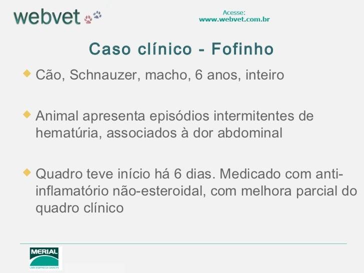 Caso clínico - Fofinho   Cão, Schnauzer, macho, 6 anos, inteiro   Animal apresenta episódios intermitentes de    hematúr...