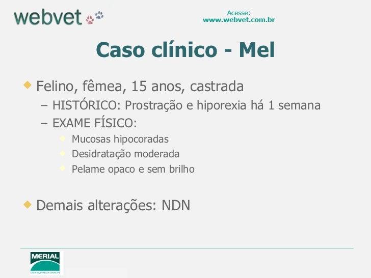 Caso clínico - Mel <ul><li>Felino, fêmea, 15 anos, castrada </li></ul><ul><ul><li>HISTÓRICO: Prostração e hiporexia há 1 s...