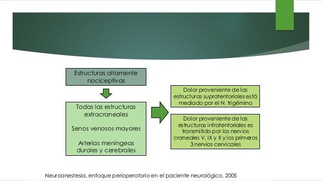 Estructuras altamente nociceptivas Todas las estructuras extracraneales Senos venosos mayores Arterias meníngeas durales y...