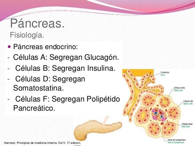 pancreatitis aguda + caso clinico