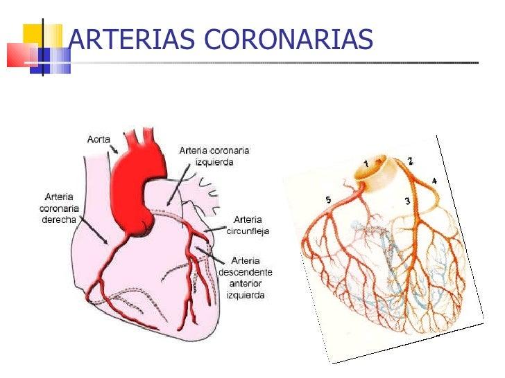 Caso Clinico Stent Coronario Definitivo