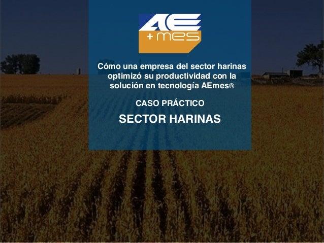 Cómo una empresa del sector harinas optimizó su productividad con la solución en tecnología AEmes® CASO PRÁCTICO SECTOR HA...