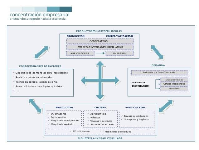 concentración empresarial orientando su negocio hacia la excelencia  PRODUCTORES HORTOFRUTÍCOLAS PRODUCCIÓN  COMERCIALIZAC...
