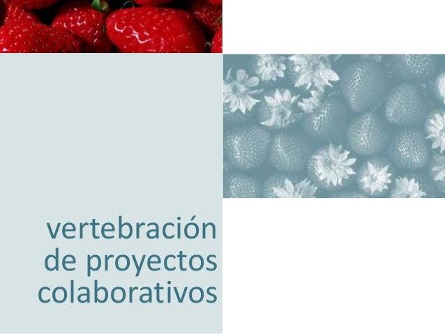 concentración empresarial orientando su negocio hacia la excelencia  vertebración de proyectos colaborativos