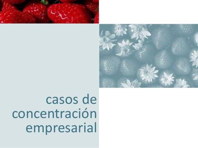 concentración empresarial orientando su negocio hacia la excelencia  casos de concentración empresarial