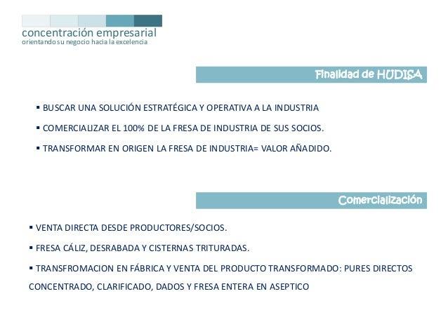concentración empresarial orientando su negocio hacia la excelencia  Finalidad de HUDISA   BUSCAR UNA SOLUCIÓN ESTRATÉGIC...