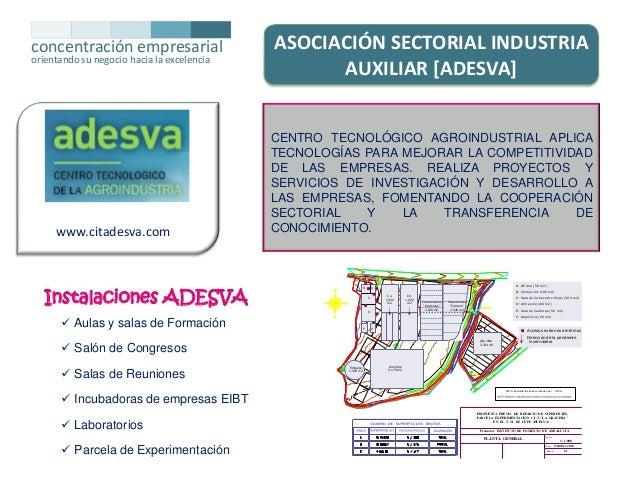 concentración empresarial orientando su negocio hacia la excelencia  www.citadesva.com  ASOCIACIÓN SECTORIAL INDUSTRIA AUX...