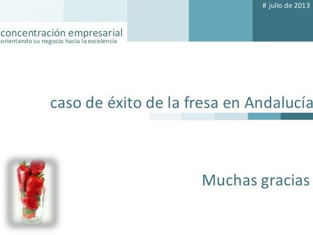# julio de 2013  concentración empresarial orientando su negocio hacia la excelencia  concentración empresarial orientando...