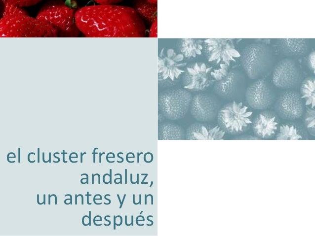 concentración empresarial orientando su negocio hacia la excelencia  el cluster fresero andaluz, un antes y un después