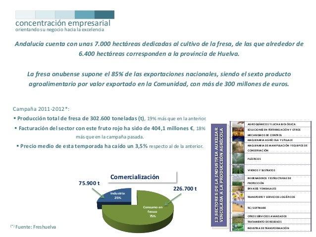 concentración empresarial orientando su negocio hacia la excelencia  Andalucía cuenta con unas 7.000 hectáreas dedicadas a...