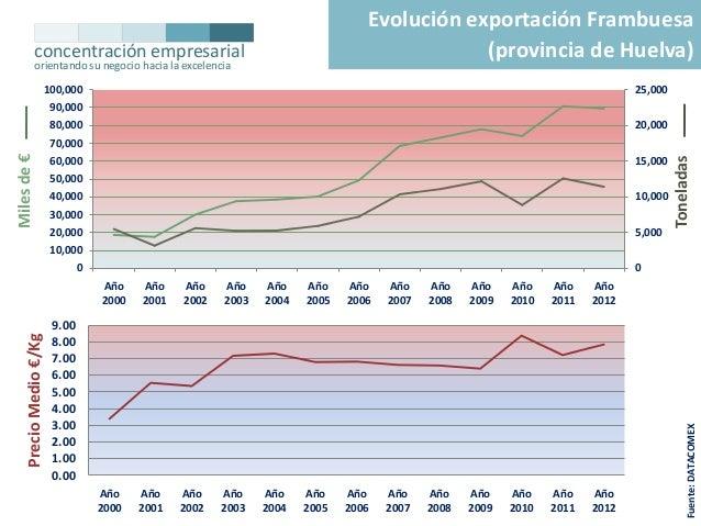 Evolución exportación Frambuesa (provincia de Huelva)  concentración empresarial orientando su negocio hacia la excelencia...