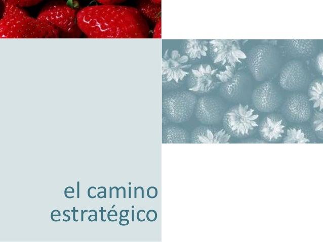 concentración empresarial orientando su negocio hacia la excelencia  el camino estratégico