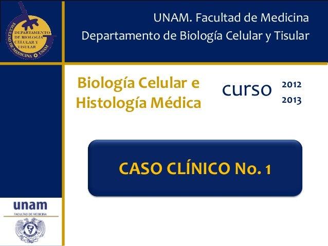 UNAM. Facultad de MedicinaDepartamento de Biología Celular y TisularBiología Celular e       curso      2012Histología Méd...