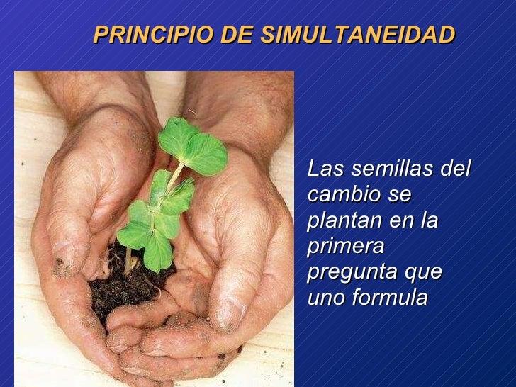 PRINCIPIO DE SIMULTANEIDAD <ul><li>Las  semillas  del  cambio  se  plantan  en la  primera   pregunta   que   uno  formula...