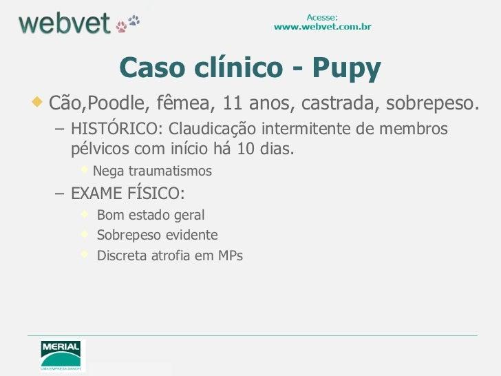 Caso clínico - Pupy <ul><li>Cão,Poodle, fêmea, 11 anos, castrada, sobrepeso. </li></ul><ul><ul><li>HISTÓRICO: Claudicação ...