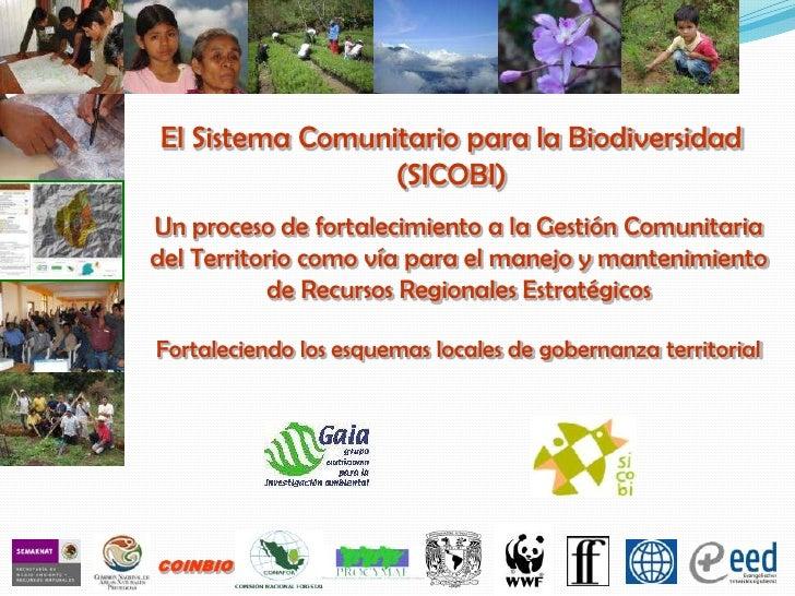 El Sistema Comunitario para la Biodiversidad (SICOBI)<br />Un proceso de fortalecimiento a la Gestión Comunitaria del Terr...