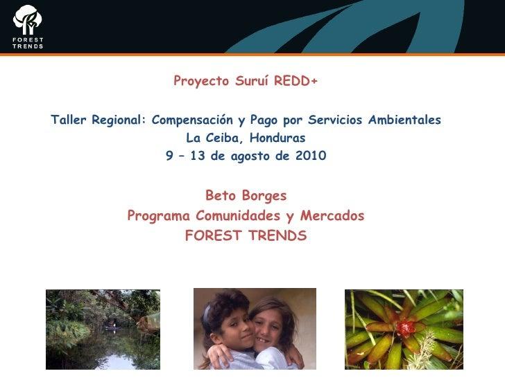 Proyecto Suruí REDD+Taller Regional: Compensación y Pago por Servicios Ambientales                      La Ceiba, Honduras...