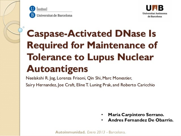 Caspase-Activated DNase IsRequired for Maintenance ofTolerance to Lupus NuclearAutoantigensNeelakshi R. Jog, Lorenza Friso...