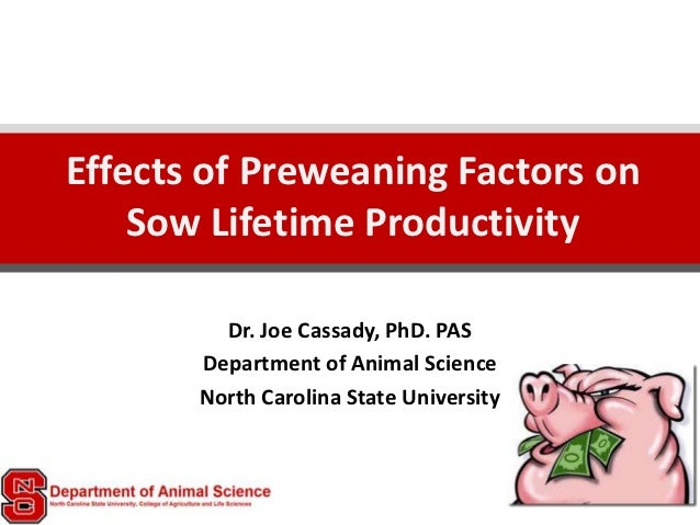 Effects of Preweaning Factors on    Sow Lifetime Productivity         Dr. Joe Cassady, PhD. PAS       Department of Animal...