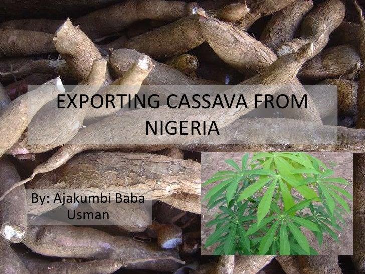 EXPORTING CASSAVA FROM           NIGERIABy: Ajakumbi Baba      Usman