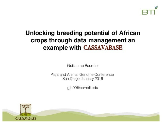 Unlocking breeding potential of African crops through data management an example with CASSAVABASE Guillaume Bauchet Plant ...