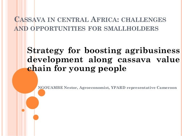 CASSAVA IN CENTRAL AFRICA: CHALLENGES AND OPPORTUNITIES FOR SMALLHOLDERS Strategy for boosting agribusiness development al...