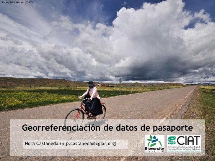 Georreferenciación de datos de pasaporte Nora Castañeda (n.p.castaneda@cgiar.org) Pic by Neil Palmer (CIAT)