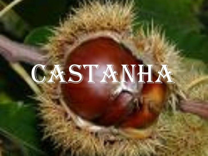 Castanha
