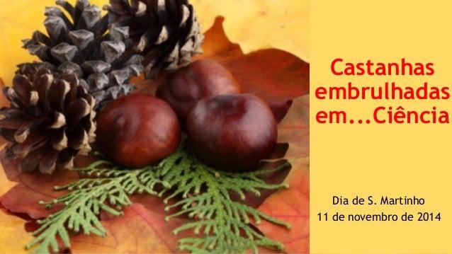Castanhas  embrulhadas  em...Ciência  Dia de S. Martinho  11 de novembro de 2014