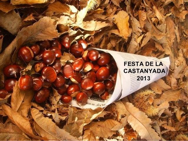 FESTA DE LA CASTANYADA 2013