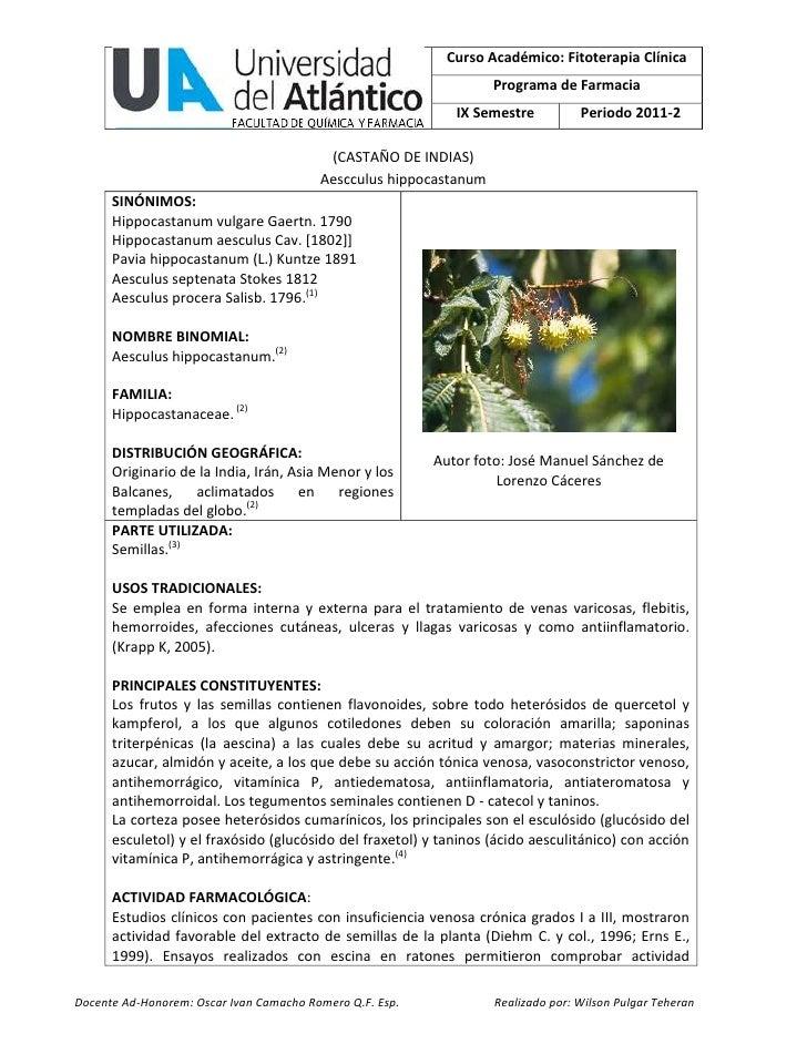 Curso Académico: Fitoterapia Clínica                                                                   Programa de Farmaci...