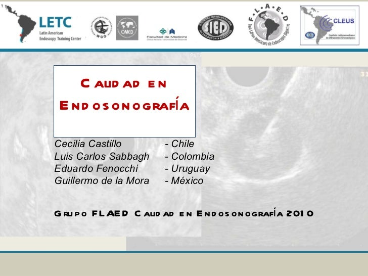 Calidad en Endosonografía Cecilia Castillo  - Chile Luis Carlos Sabbagh  - Colombia Eduardo Fenocchi  - Uruguay Guillermo ...