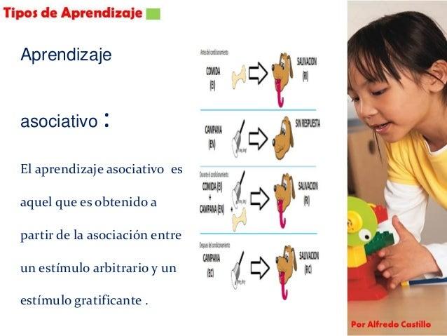 Aprendizaje conceptual: El aprendizaje conceptual involucra el reconocer y asociar características comunes.