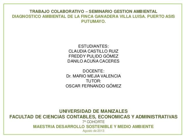 TRABAJO COLABORATIVO – SEMINARIO GESTION AMBIENTAL DIAGNOSTICO AMBIENTAL DE LA FINCA GANADERA VILLA LUISA. PUERTO ASIS PUT...