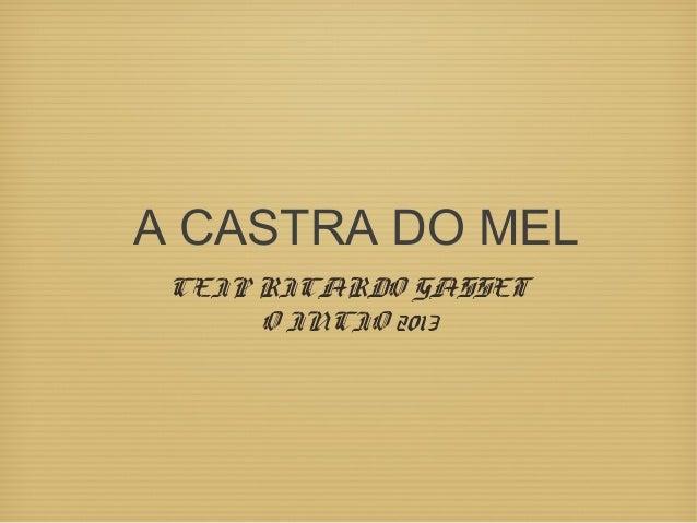 A CASTRA DO MEL CEIP RICARDO GASSET O INCIO 2013