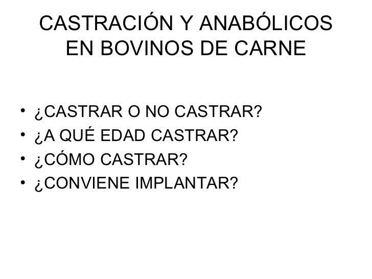 CASTRACIÓN Y ANABÓLICOS EN BOVINOS DE CARNE <ul><li>¿CASTRAR O NO CASTRAR? </li></ul><ul><li>¿A QUÉ EDAD CASTRAR? </li></u...