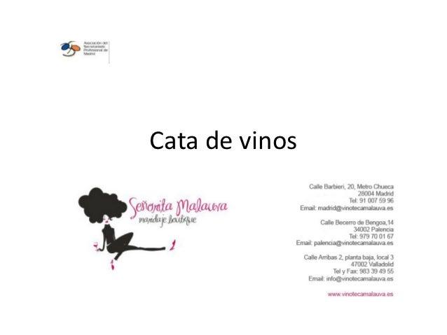 Cata de vinos  por Claudia