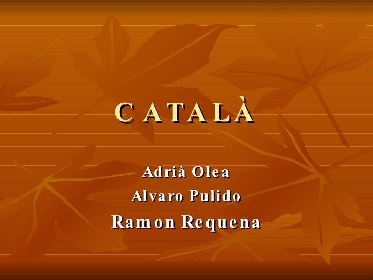CATALÀ Adrià Olea Alvaro Pulido Ramon Requena