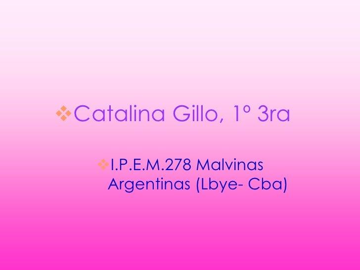 Catalina Gillo, 1º 3ra      I.P.E.M.278 Malvinas      Argentinas (Lbye- Cba)