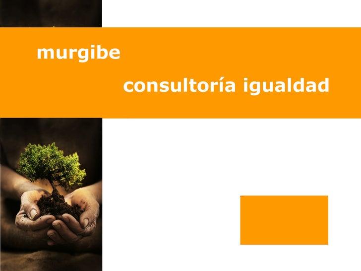 murgibe          consultoría igualdad                     Picture 4