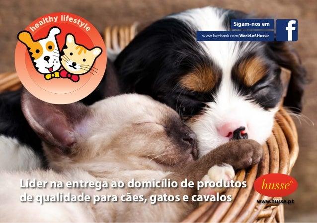Sigam-nos em www.facebook.com/World.of.Husse Líder na entrega ao domicílio de produtos de qualidade para cães, gatos e cav...