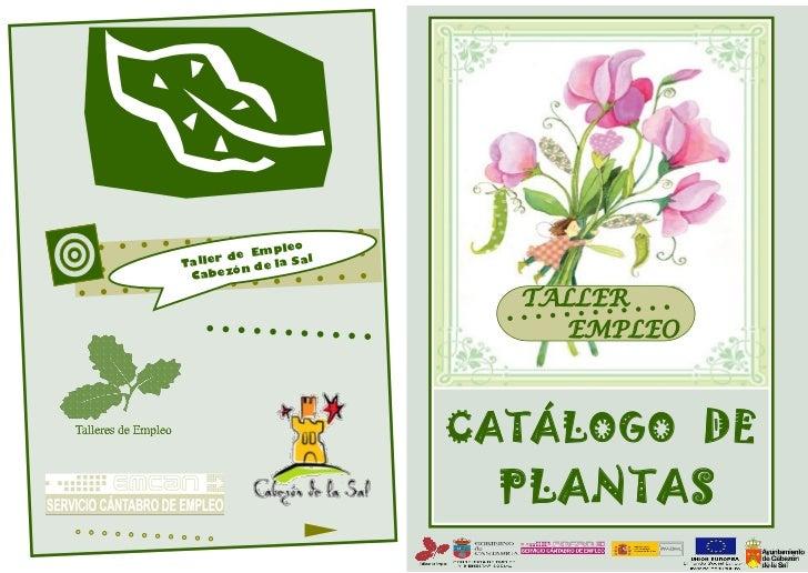 Catalogo plantas for Plantas ornamentales para colorear